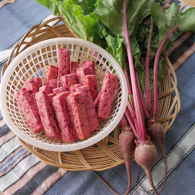 【ビーツのパルミジャーノスティック】畑の小さなビーツ(赤カブ)を使ったポリポリ食感の少ししょっぱいおやつ。おつまみにも◎。・GW終盤、やっとのんびり中。#家庭菜園#ビーツ#rootbeet #beet#おやつ#焼き菓子